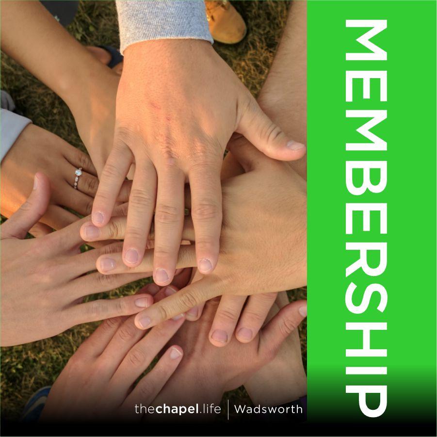 Membership SOCIAL